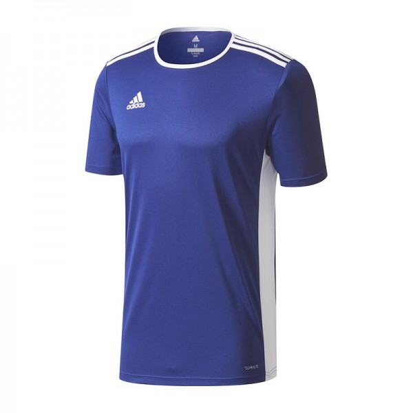 Adidas Herren Trikot Entrada 18 blau