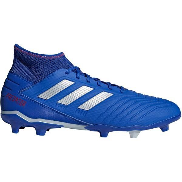Adidas Herren Predator 19.3 FG Fussballschuhe blau-grau